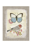 Red Natural Life, Butterfly and Little Bird Poster von Chad Barrett