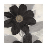 Midnight Bloom Giclee Print by Ivo (Lipman)