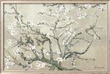 Branches d'amandier en fleurs, Saint-Rémy, vers1890 - tonalité brun beige Affiche par Vincent van Gogh