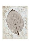 Silver and Persimmon Reproduction procédé giclée par Ariane Morey