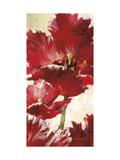 Jubilant Red Tulip Panel 2 Plakater af Brent Heighton
