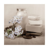 Hydrangea and Soap Giclée-Premiumdruck von Julie Greenwood