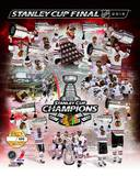 Chicago Blackhawks - Hossa, Seabrook, Keith, Toews, Sharp, Bolland, Bickell, Crawford, Kane, Shaw,  Photo