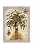 Linen Date Palm Tree Poster von Chad Barrett