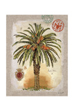 Linen Date Palm Tree Posters by Chad Barrett