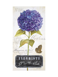 Parisian Hydrangea Prints by Angela Staehling