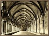 Salisbury Arches Framed Photographic Print by Judith Bartos