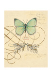 Scripted Papillon Posters af Chad Barrett