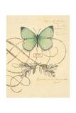 Scripted Papillon Poster von Chad Barrett