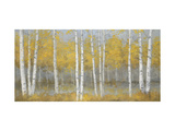 Golden Birch Panel Premium Giclee Print by Jill Schultz McGannon