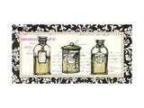 Boudoir Bath Oils 1 Kunstdrucke von  Valentina