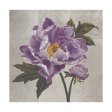 Plum Peonies 1 Prints by Gloria Eriksen