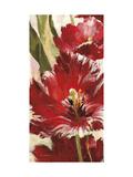 Jubilant Red Tulip Panel 1 Plakat af Brent Heighton