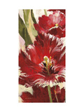 Jubilant Red Tulip Panel 1 Print by Brent Heighton
