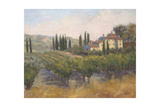 Tuscan Moment 2 Giclee Print by Jill Schultz McGannon