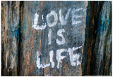 Love is Life Graffiti Prints