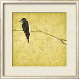 Birds On Branch Print by Jace Grey