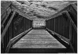 Wooden Bridge Myrtle Beach SC Posters