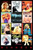 Blondie Covers Fotografie