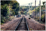 Train Tracks Oyster Bay New York Print