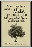 What Life Is About Humor Poster Posters