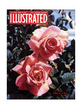 1950s UK Illustrated Magazine Cover Giclee Print