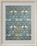 Dove and Rose Fabric Design, c.1879 Framed Giclee Print by William Morris