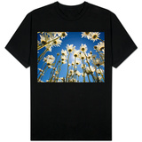 Sun and blue sky through daisies T-shirts