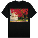 Tree with Red Leaves and Barn Shirts