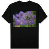 Purple Allium Flowers Photo Shirt