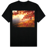 Sunrise Through Autumn Leaves T-shirts