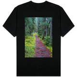 Massachusetts Appalachian Trail Photo T-Shirt