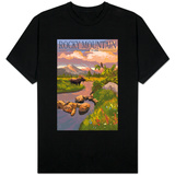 Moose and Meadow - Rocky Mountain National Park T-shirts