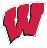 NCAA Wisconsin Badgers Vinyl Magnet Magnet