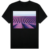 Lavender field in bloom T-shirts