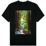 Muir Woods National Monument, California - Pathway T-shirts
