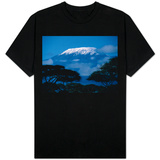 Kilimanjaro and Acacia Trees T-Shirt