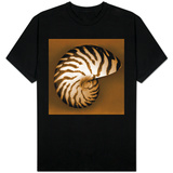 Nautilus Shell Shirts