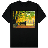Fall Foliage Surrounds an Open Gate T-shirts