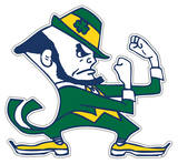 NCAA Notre Dame Fighting Irish Vinyl Magnet Magnet