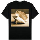 Sea Shells IV T-shirts