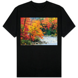 Stream in Autumn Woods T-Shirt