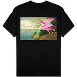 Roseate Spoonbill, Platalea Leucorodia, from 'The Birds of America', 1836 T-Shirt