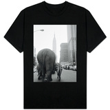 Circus Animals on 33rd Street Shirts