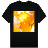 Autumn Leaves in Soft Sunshine III Shirt