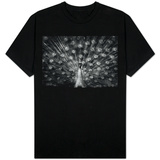 Peacock Spreading Feather Black White Photo Shirts