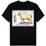 Mutton: Diagram Depicting the Different Cuts of Meat T-Shirt