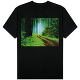 Unpaved Road in Redwoods Forest T-Shirt