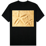 Starfish Imprints Shirts