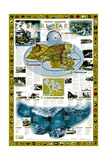 2001 Pearl Harbor Posters by  National Geographic Maps